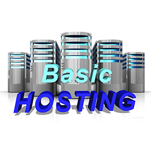 High Performance Hosting – Basic – Monthly